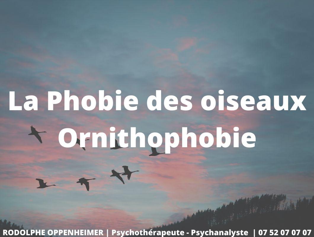 You are currently viewing La phobie des oiseaux – Ornithophobie