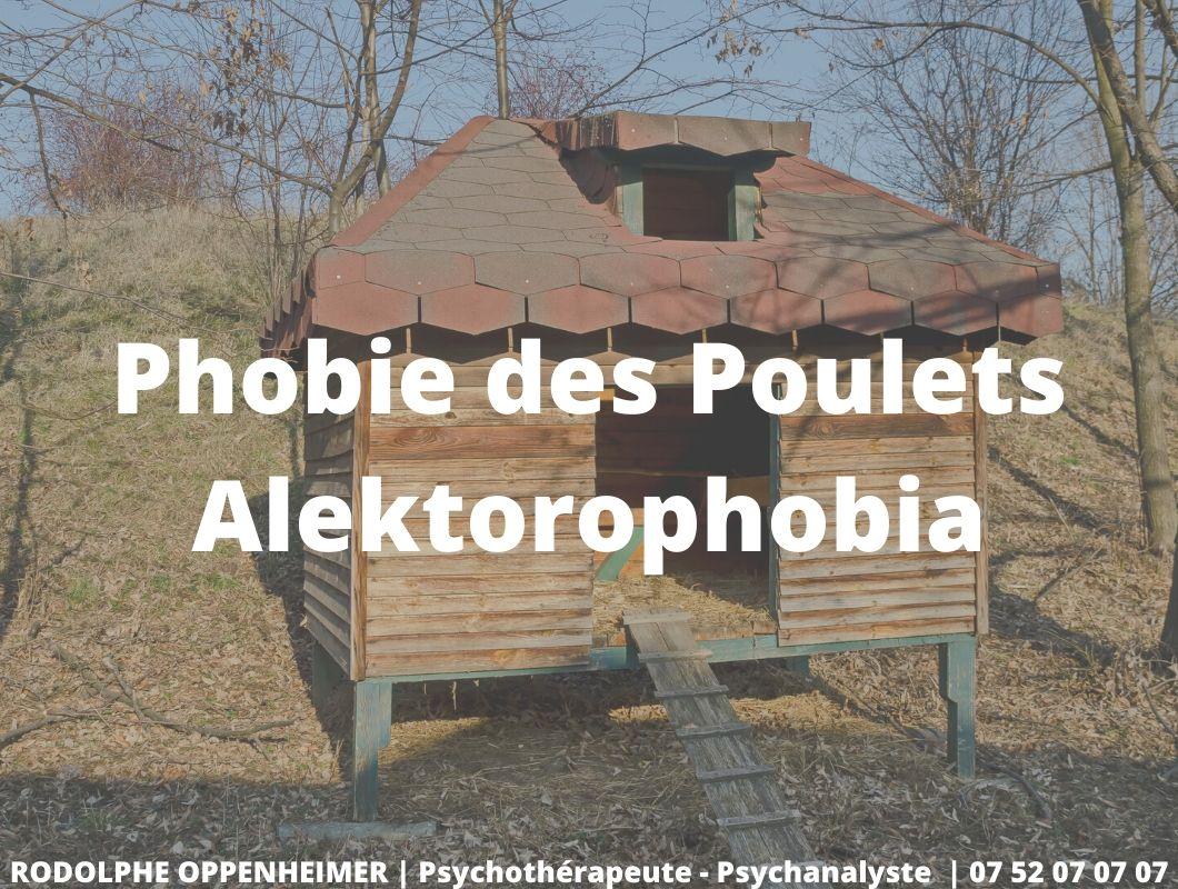 Phobie des poulets – Alektorophobia
