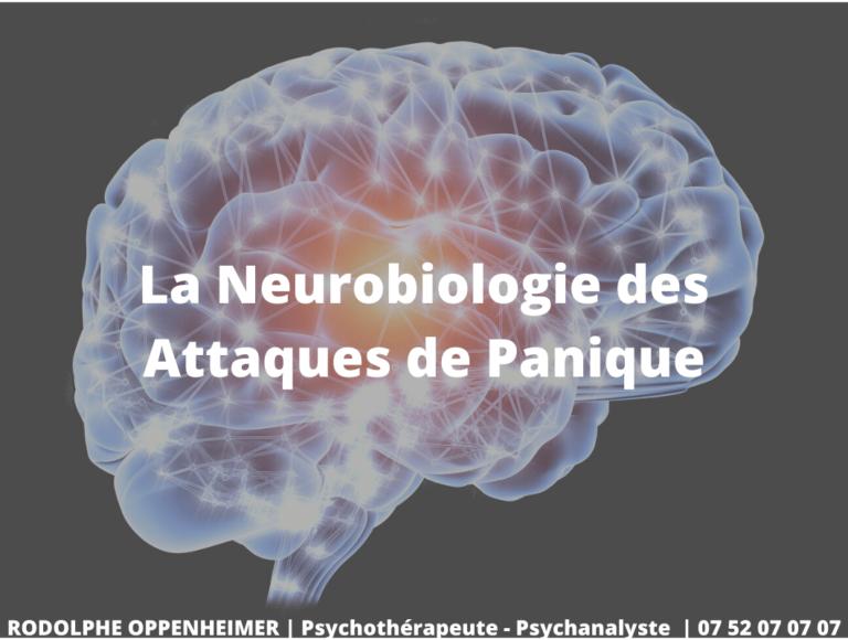 La Neurobiologie des Attaques de Panique