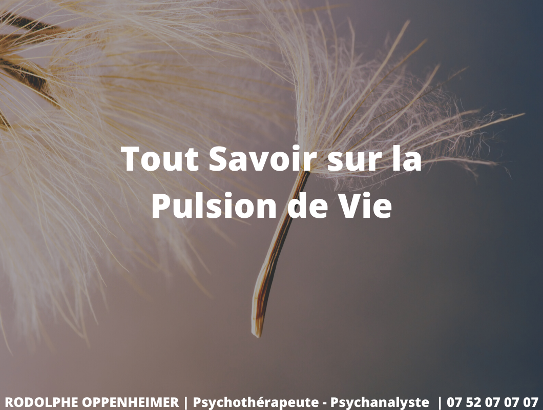 You are currently viewing Tout savoir sur la pulsion de vie